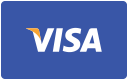 Accept Visa payments online